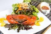 Crab — Stock Photo