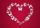 Heart of white Butterfly. Vector illustration. — Stock Vector