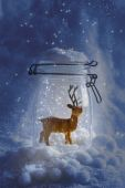 Reindeer Snowglobe — Stock Photo