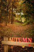 Vicolo del paese in autunno — Foto Stock