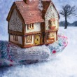 Winter Cottage In Gloved Hand — Stock Photo #56164953