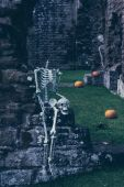 Skeletons In Old Abbey — Stock fotografie