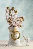 Springtime Blossom — Stock Photo