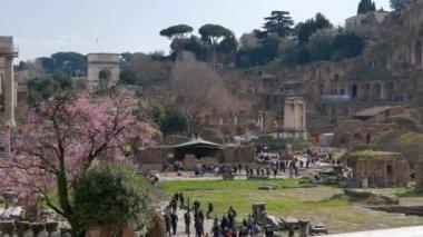 Roman Forum. Rome, Italy — Stock Video