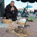 Snake charmer — Stock Photo #71404447