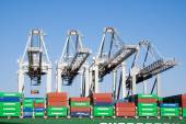 Port Rotterdam ECT — Stok fotoğraf