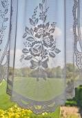 Window with lace curtain — Stockfoto