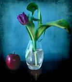 Still life: a purple tulip in a glass vase, a red apple on a blue texture — Stock Photo