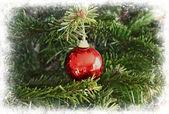 Christmas tree glass ball framed in white — Stock Photo