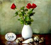 Still llife with red roses candle and shells — Stock Photo