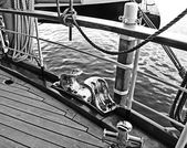 Old yacht, detail of deck with brass cleat — Stock Photo