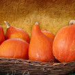 Hokkaido orange pumpkins in a basket — Stock Photo #58760591