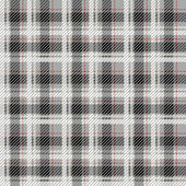 Black and white seamless tartan with a thin red stripe. — Stock Vector