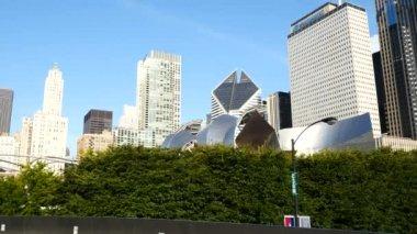 Millennium Park, Chicago, Illinois. — Stock Video