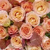 Orange rose flowers bouquet — Stock Photo