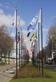 International Flags in The Hague — Stock Photo