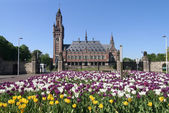 Peace Palace in The Hague — Stock Photo