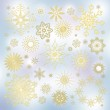 Collection of snowflakes — Stock Photo #54101475