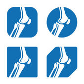 Human knee joint — Stock Vector