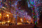Colorful Holiday Lights Adorn Trees In Midtown Atlanta — Stock Photo