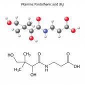 Pantothenic acid molecule - vitamin b5 — Stock Vector