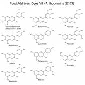 Structural formulas of food additives - anthocyanins — Wektor stockowy