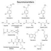 Chemical formulas of basic neurotransmitters — Stock Vector