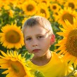 Childhood in the sunflowers — Stock Photo #69374623