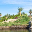 Nature of the river Nile in Egypt — Stock Photo #62297975