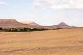 The Bahariya Oasis in Egypt — Stock Photo
