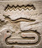 Jeroglíficos egipcios en la pared de un templo — Foto de Stock