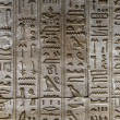 Egyptian hieroglyphs on the wall of the Horus temple in Egypt — Stock Photo #62361519