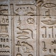 Egyptian hieroglyphs on the wall in a temple — Stock Photo #62361139