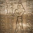 Egyptian hieroglyphs on the wall of the Horus temple in Egypt — Stock Photo #62361213
