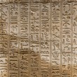 Egyptian hieroglyphs on the wall of the Horus temple in Egypt — Stock Photo #62361221