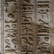 Egyptian hieroglyphs on the wall of the Horus temple in Egypt — Stock Photo #62361481