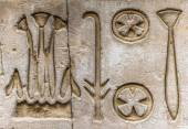 Egyptian hieroglyphs on the wall in a temple — Photo