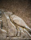 Ägyptische Hieroglyphen an der Wand in einem Tempel — Stockfoto