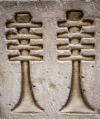 埃及的象形文字,在一座寺庙的墙上 — 图库照片