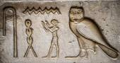 Egyptian hieroglyphs on the wall in a temple — Stock fotografie