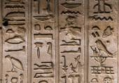 Egyptian hieroglyphs on the wall in a temple — Zdjęcie stockowe