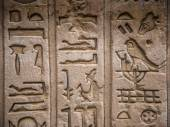 Egyptian hieroglyphs on the wall in a temple — Fotografia Stock