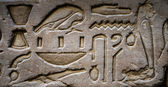 Egyptian hieroglyphs on the wall of the Horus temple in Egypt — ストック写真