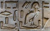 Egyptian hieroglyphs on the wall of the Horus temple in Egypt — Fotografia Stock