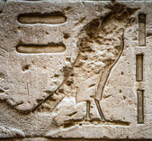 Egyptské hieroglyfy na zdi v chrámu Sobek v Kóm Ombo, Egypt — Stock fotografie