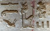 Jeroglíficos egipcios en la pared en el templo de Sobek en Kom Ombo, Egipto — Foto de Stock