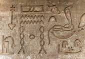 Egyptian hieroglyphs on the wall in the Sobek temple in Kom Ombo, Egypt — Stock Photo
