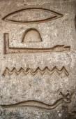 египетские иероглифы на стене в sobek храме в kom ombo, египет — Стоковое фото