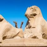 Karnak temple, Luxor, Egypt — Stock Photo #62455301