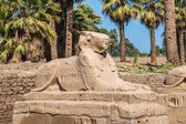 Luxor Temple, East Bank of the Nile, Egypt — Stock Photo